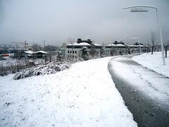 Invierno 39