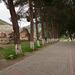 Ephesos DSC03747