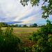 Fields near Stretton