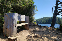 Happy Bench Monday from Tugman State Park! (+7 insets)