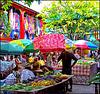 Victoria : grandi  piante perenni all'interno del market a cielo aperto