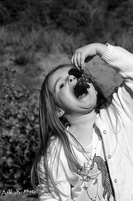 Ambre (et la grappe de raisin...)