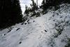 The trail ahead...