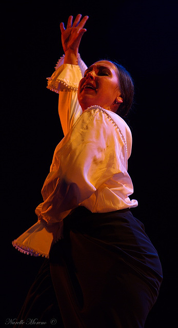 Flamenco, Madrid, Spain