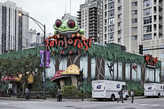 The Rain Forest Café – Ohio Street at North Clark Street, Chicago, Illinois, United States