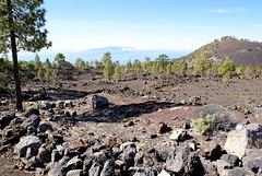 Auf dem Weg hinunter zum Atlantik. Im Hintergrund am Horizont La Gomera. ©UdoSm