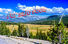 Tuolumne Meadows - Yosemite National Park (090°)