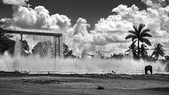 "sugar mill ""Abel Santamaria"" - spray ponds"