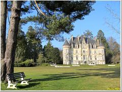 """""""Troubadour castle"""" in its green settings"""