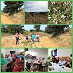 A-dos-Ruivos Community & Friends Lunch