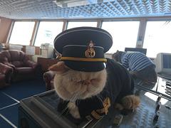 Le capitaine à bord !!