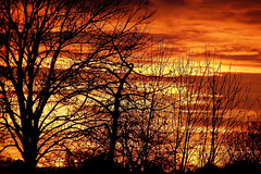 "Screeching burning air  ""Storm-sunset """