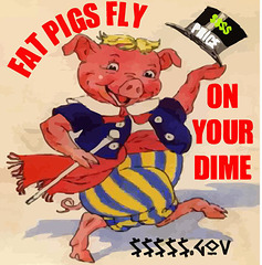 Fat Pigs Fly