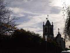 Saint Pelagius Church.