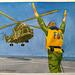 Chopper 14x11in