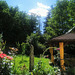 Sommermorgen in meinem Garten