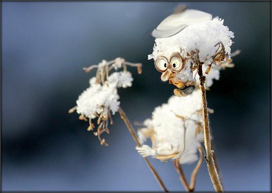 Troll des neiges