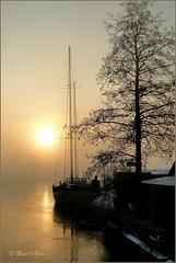 Morning Glow...