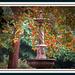 L'autunno in cornice!!