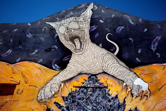 Monte Gordo, Wild Street Art