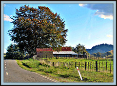 Lonely Farm.