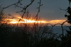 Soleil du soir ...Au loin l'Ardèche enneigée...