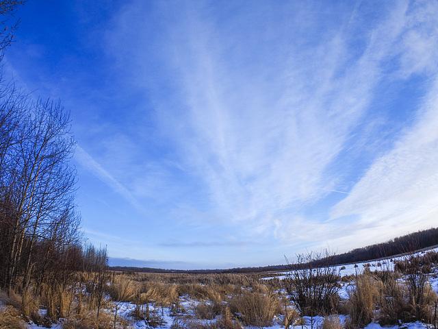 Sky over Bennett Lake