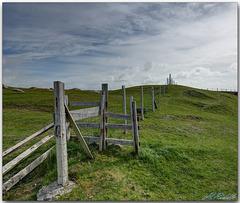 HFF –  White Strand fence