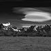 torres_cloudship