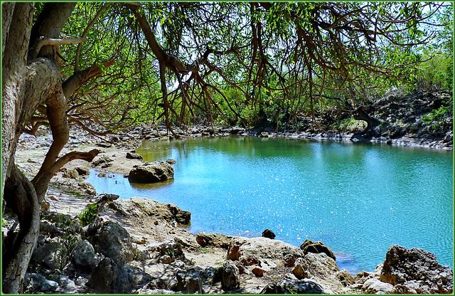 Oman : Molta acqua quando arrivano i monsoni...ma mancano i bacini di raccolta per poter irrigare le coltivazioni quando arrivano gli alisei
