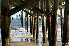 Under the Pier (2)