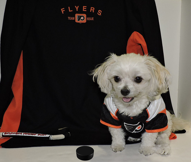 Bella Is A Philadelphia Flyers Fan