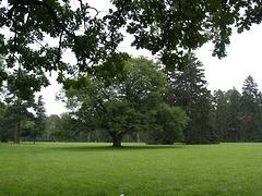 В парке Александрия