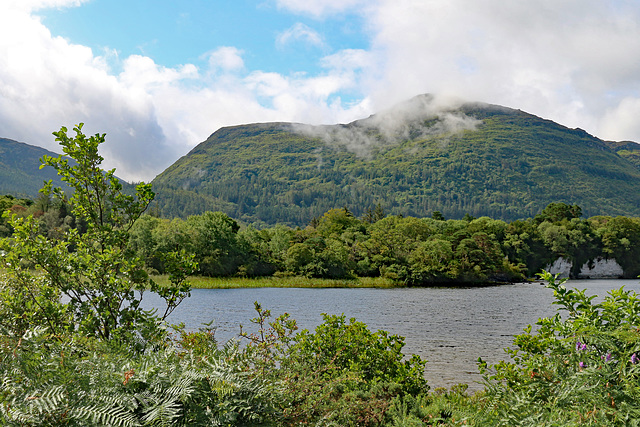 View from near the Muckross House