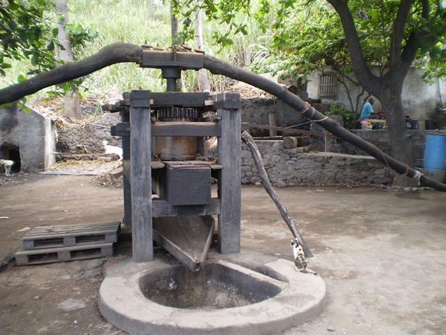 Sugar-mill.