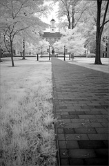 Gray day infrared I