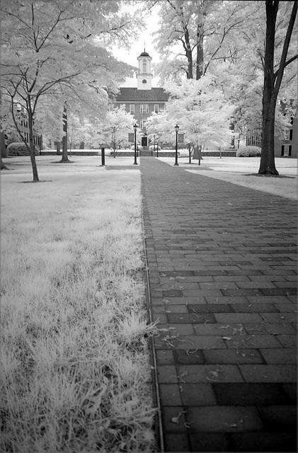 Gray day infrared I