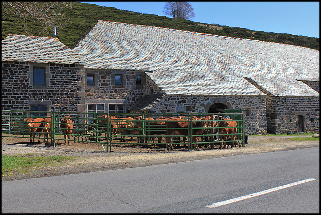Ferme Haute-Ardèche