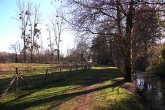 promenade au bord de l'Indre