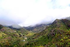 ES - Teneriffa - Anaga-Gebirge