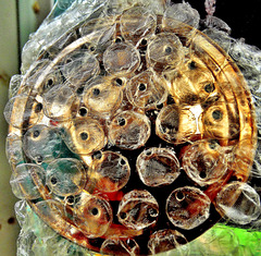 Bubble Wrapped Rose.......On A Watering Can!!!