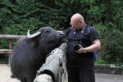 Zwei, die sich verstehen (Zoo Augsburg)