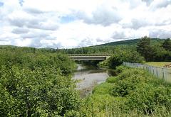 Pont et clôture parmi la nature / Bridge and fence amongst nature