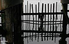 Under the Pier (1) -- HFF !!