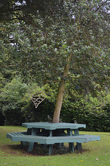 Beech Hill Country House, Bench and Table around the Tree