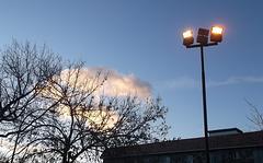 Morning lightning / Éclairage matinal