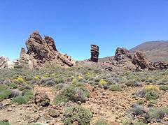 Teide (9)