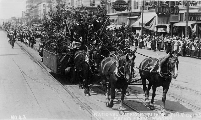 6798. National Patriotic Parade, July 1st, 1915 [Ancient Order of Foresters' float]