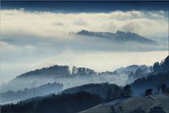 Nebelübergreifend