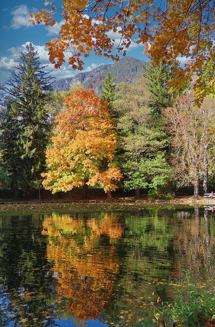 1 (29)...austria loweraustria reichenau a. d. rax..park